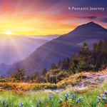 A Pantastic Journey